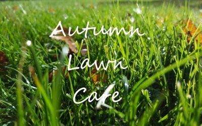 Autumn Lawn Care Guide