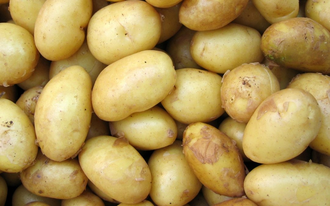 Root One guide to potatoes